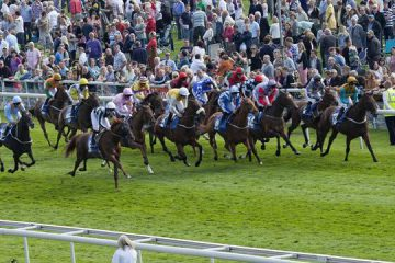 partants probables grand steeple chase 2018